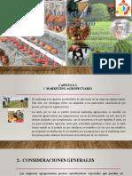Marketing Agropecuario.pptx