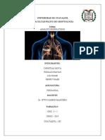 Fisiologia Sistema Respiratorio.docx