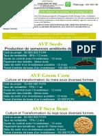 PUB AVF.pptx