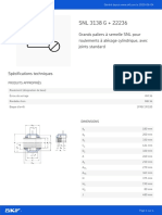 SNL 3138 G + 22236_20200604.pdf