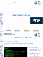 Consultas.pptx
