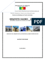 DASMO 2008 raport final