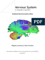 The Nervous System - Peripheral Atlas (UNLOCKED) (FML).pdf