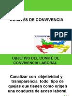 presentacion_comites_convivencia (3)