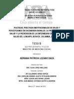 2010 Tesis Maestría prácticas institucionales PyP Boyacá 2008-2009.pdf