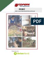 PerfilMicrofinanzasPeru.pdf