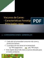 Clase 6 Vacunos de Carne_Razas