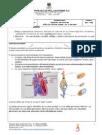 GUIAS°4  DE CIENCIA, RELIGIÓN Y TECNOLOGIA DE CUARTO.pdf