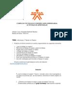 Actividad - Informe aleja.docx