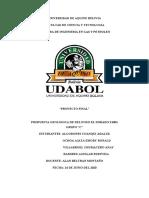 """PROPUESTA GEOLOGICA DE DEL POZO EL DORADO X1001             GRUPO """"C"""".docx"""