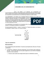 BIOQUÍMICA DE LOS CARBOHIDRATO.pdf