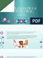 patologia diagnostica