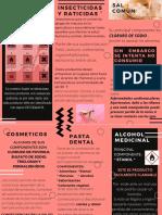 Productos quimicos en el hogar.pdf