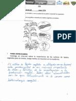Ariahtna Rodriguez-CTA-Tarea-9.pdf