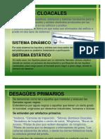 1- Presentación cloacales.pdf