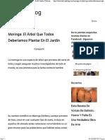 Moringa- El Árbol Que Todos Deberíamos Plantar En El Jardín - Delicias Blog.pdf
