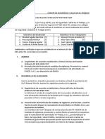 Acta de Reunion Ordinaria 029-2020