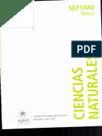 CN 7° Alumno Cuaderno de trabajo 2018 II° semestre.pdf