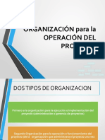 FAP - ORGANIZACION DEL PROYECTO.pdf