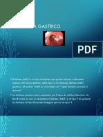 Linfoma gastrico 2019 laura-convertido