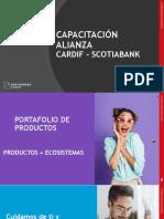 CARDIF ACCIDENTES PERSONALES.pdf