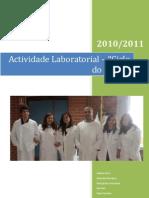 Actividade Laboratorial(1)