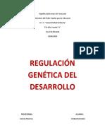 BIO - REGULACION GENETICA DEL DESARROLLO - 5TO A, Cristian Bermúdez.docx