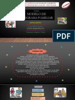 MODELO DE PROGRAMA FAMILIAR