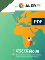 aler_2017_oct_relatorio-nacional-ponto-situacao-renovaveis-em-mocambique.pdf