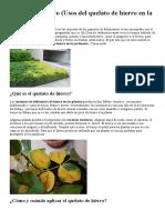 Fertilizante - Con Hierro