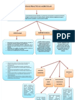 Mapa Conceptual Buenas Practicas Agricolas.pdf