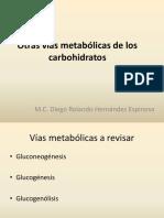 Otras vías metabólicas de los carbohidratos