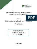 APO Corazón.pdf