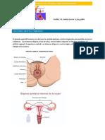 metodos anticonceptivos -ITS