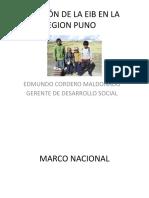 SITUACIÓN DE LA EIB EN LA REGION PUNO.pptx