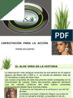 Presentación Aloe