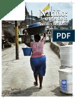 00058220_Analisis conflictividad Nariño PDF pnud.pdf