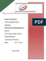 133217823-Trabajo-Practicas-Pre-profesionales.docx