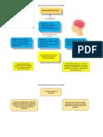 Sistema nervioso central psicologia