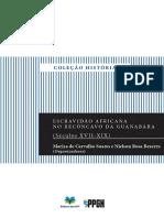 Escravidao-africana-no-reconcavo-da-Guanabara.pdf