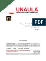 Yamit Formato de observación PDF