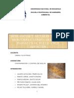 Contaminación de Suelos por metales, Hg, As, Cd,Pb.pptx