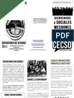 Triptico CECSo Mechones 2011