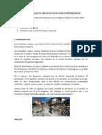 DESASTRES QUE SE ORIGINAN EN PLANOS SUBTERRANEOS