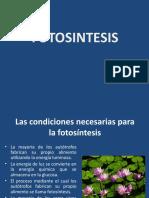 FOTOSINTESIS2016.pptx