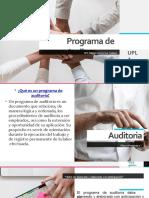 Programa de Auditora