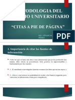 METODOLOGIA DEL TRABAJO UNIVERSITARIO - CITAS A PIE DE PAG.