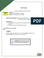 Guía 05.docx