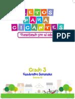 PROFE MERCEDES.pdf