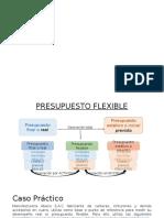 313097936-Caso-Practico-Presupuesto-Flexible